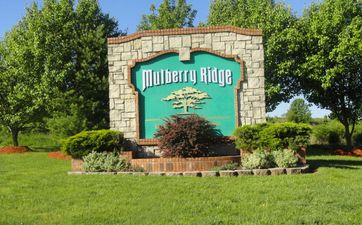 Photo of Mulberry Ridge
