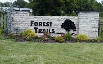 Photo of Forest Trails