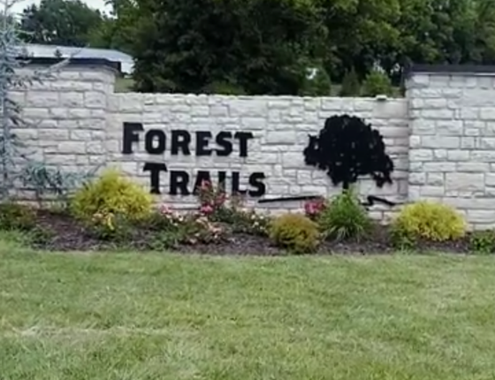 Photo 1 of Forest Trails