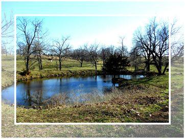 0 1025/1700 Stockton, MO 65785 - Image 1