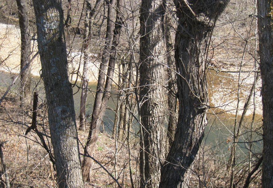 2022 Mill Dam Road Marshfield, MO 65706 - Photo 6