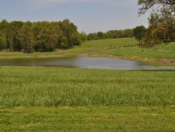 5633 Farm Road 1012 Purdy, MO 65734 - Image 1