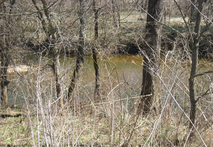 2164 Mill Dam Road Marshfield, MO 65706 - Photo 14