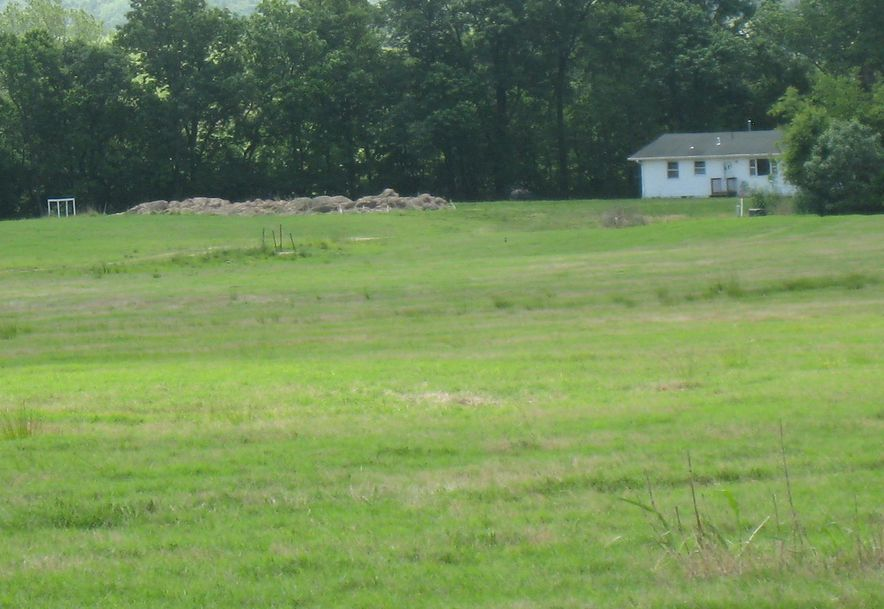 2164 Mill Dam Road Marshfield, MO 65706 - Photo 30