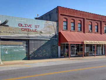 15 West Olive Aurora, MO 65605 - Image 1