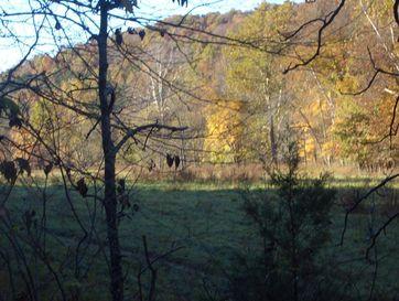 0 Hwy 65 & Woods Fork Highlandville, MO 65669 - Image