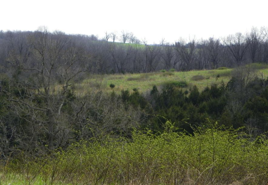 10798 Highway 5 Grovespring, MO 65662 - Photo 13