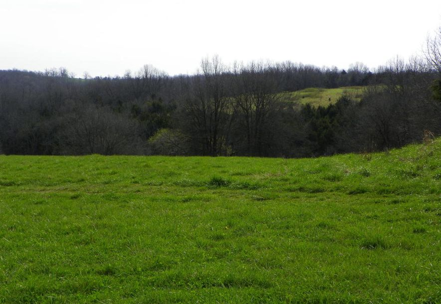 10798 Highway 5 Grovespring, MO 65662 - Photo 17