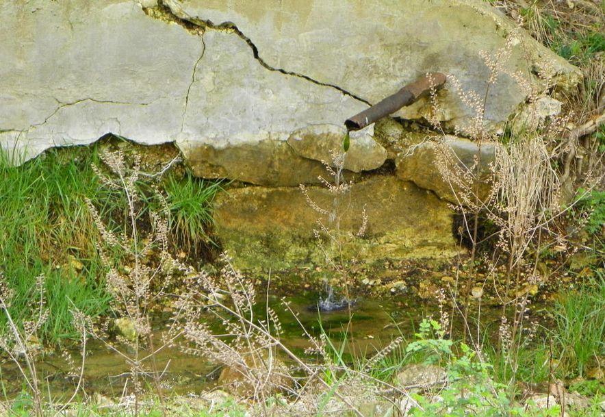 10798 Highway 5 Grovespring, MO 65662 - Photo 8