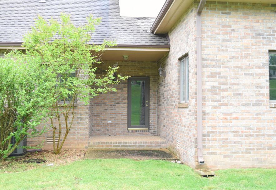 223 Norwood Drive Branson, MO 65616 - Photo 43
