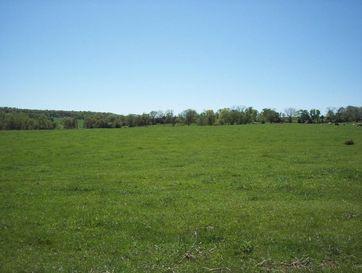 Tbd Farm Rd. 1227 Aurora, MO 65605 - Image 1