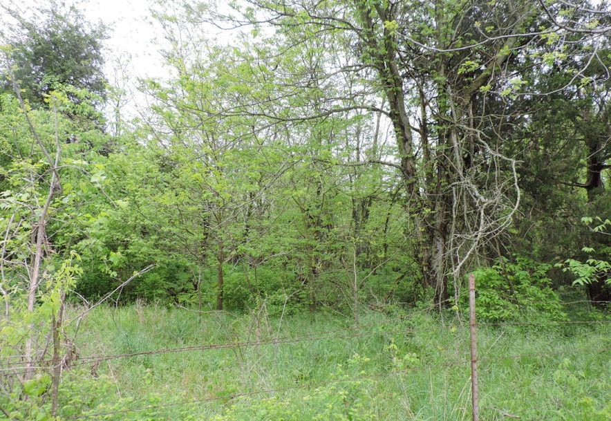 0 East Farm Road 56 Fair Grove, MO 65648 - Photo 2