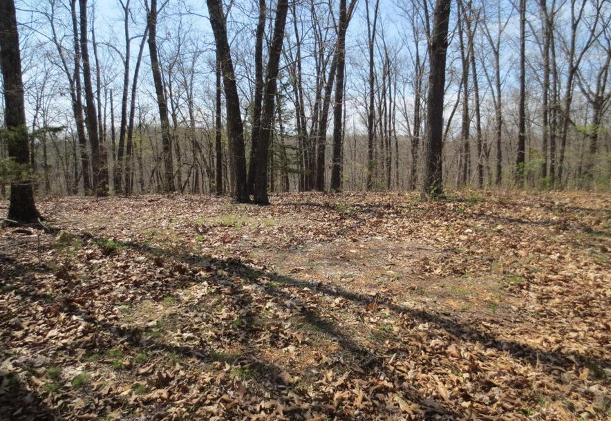 Lot 9 Sherwood Lane Chestnutridge, MO 65630 - Photo 3