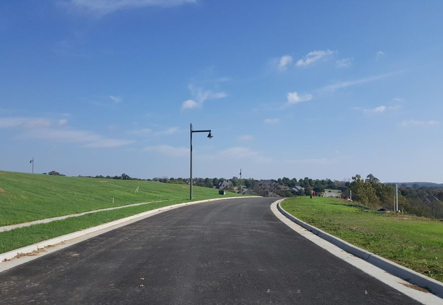Lot 1 Ph 16 Rivercut Springfield, MO 65810 - Photo 2
