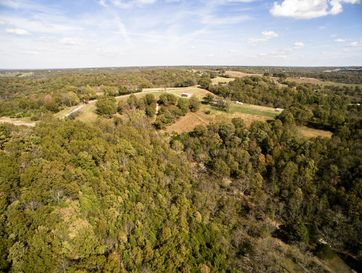 1261 Mule Barn Drive Cape Fair, MO 65624 - Image 1