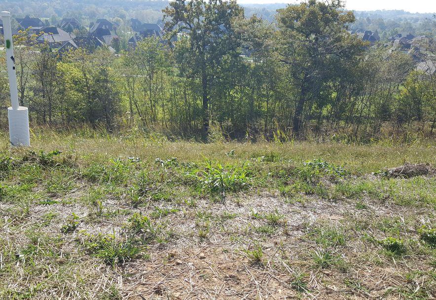 Lot 4 Ph 16 Rivercut Springfield, MO 65810 - Photo 1