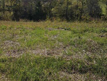 Lot 6 Ph 16 Rivercut Springfield, MO 65810 - Image