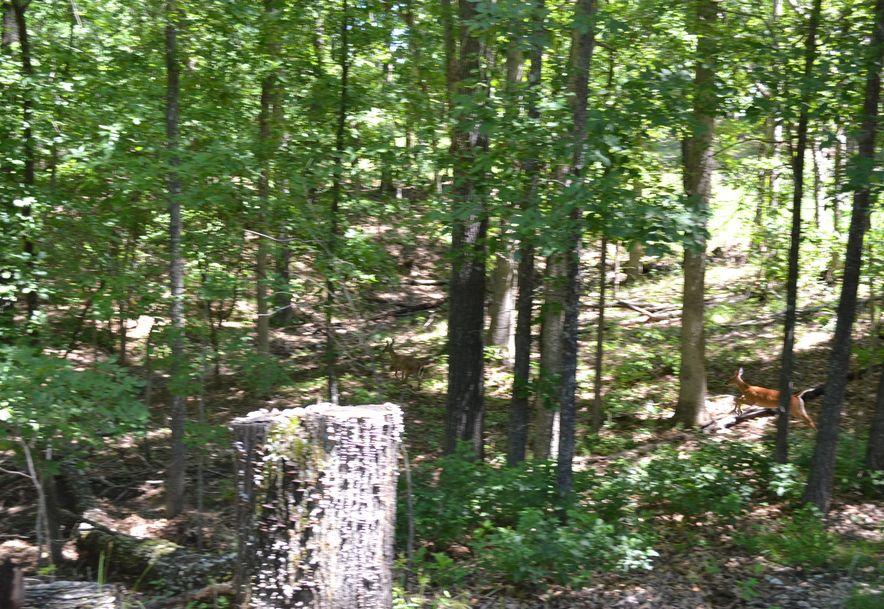 269 King Lane Pottersville, MO 65790 - Photo 25