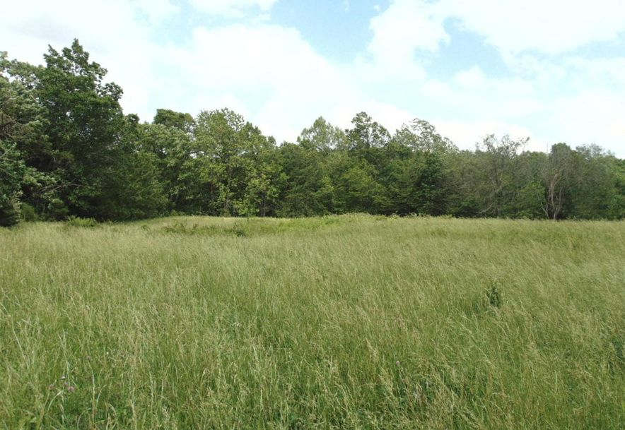 10810 State Hwy Aa Grovespring, MO 65662 - Photo 4