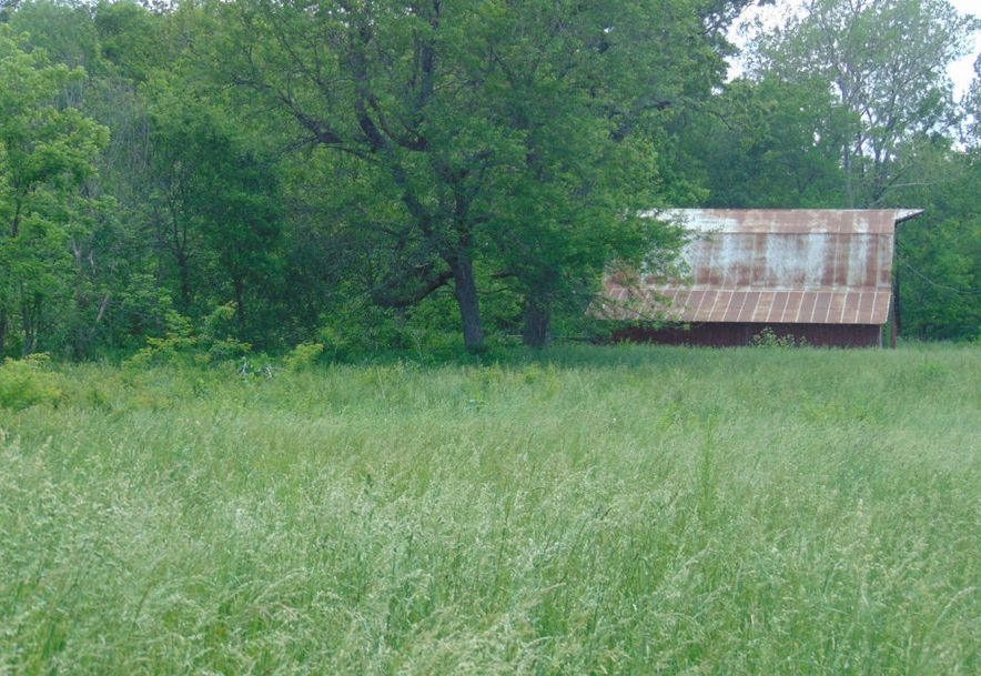 10810 State Hwy Aa Grovespring, MO 65662 - Photo 9