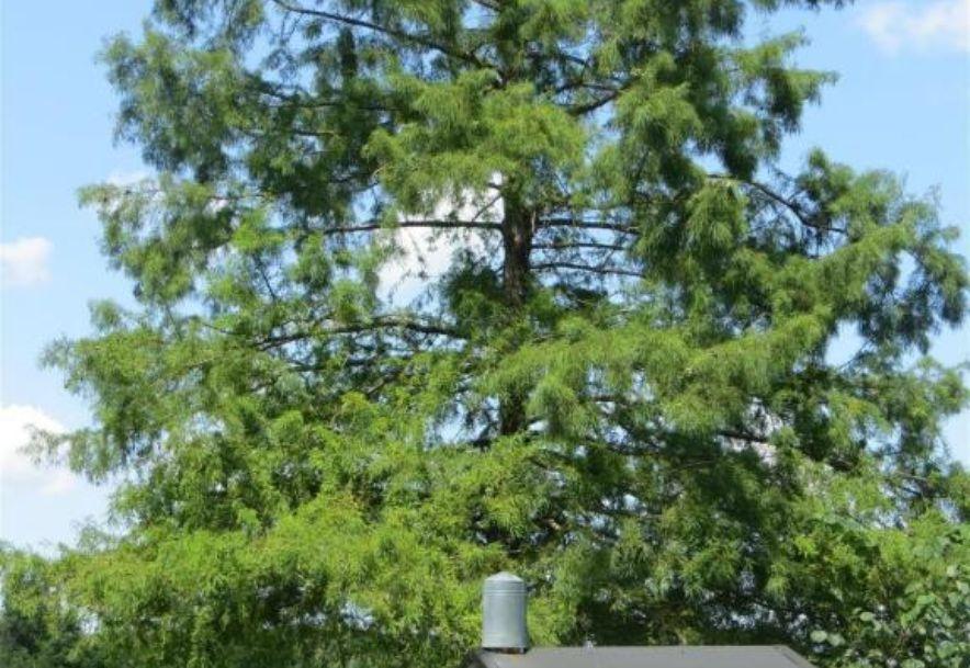 17 Sandstone Trail Fair Grove, MO 65648 - Photo 64