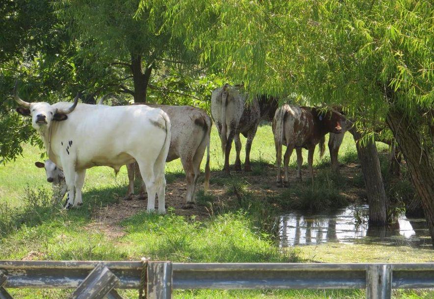 17 Sandstone Trail Fair Grove, MO 65648 - Photo 72