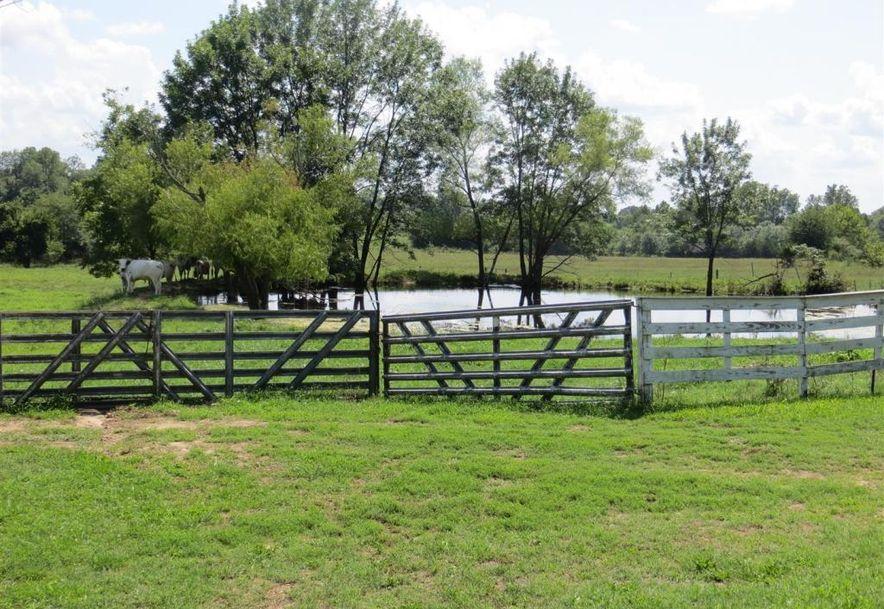 17 Sandstone Trail Fair Grove, MO 65648 - Photo 73