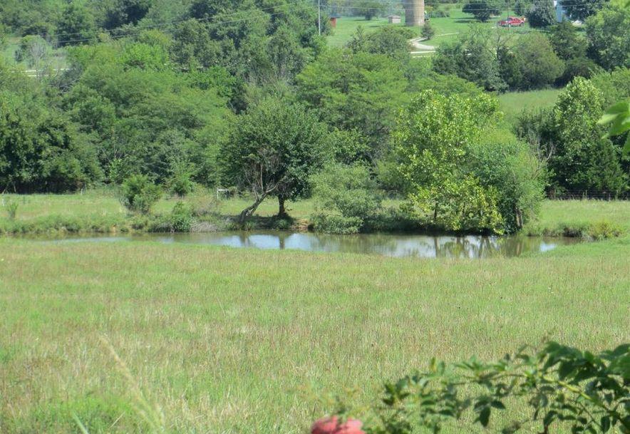17 Sandstone Trail Fair Grove, MO 65648 - Photo 90