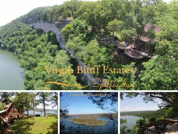 30.1 M/L Virgin Bluff Estates Galena, MO 65656 - Image 1