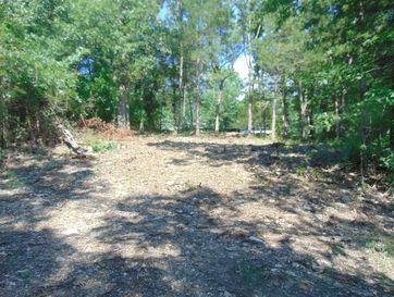 Tba Blackhawk Road Forsyth, MO 65653 - Image 1