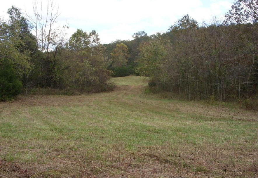 00 County Road 421 Squires, MO 65755 - Photo 2