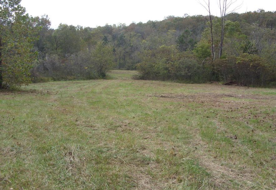 00 County Road 421 Squires, MO 65755 - Photo 4