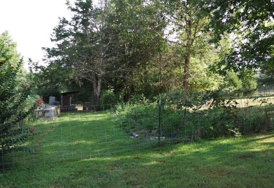 225 Jersey Lane Drury, MO 65638 - Photo 25
