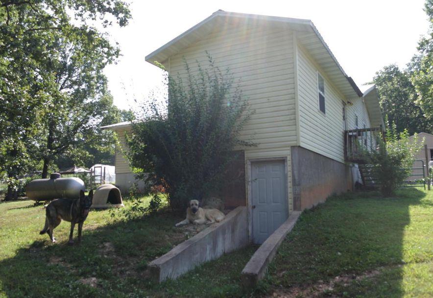 225 Jersey Lane Drury, MO 65638 - Photo 5