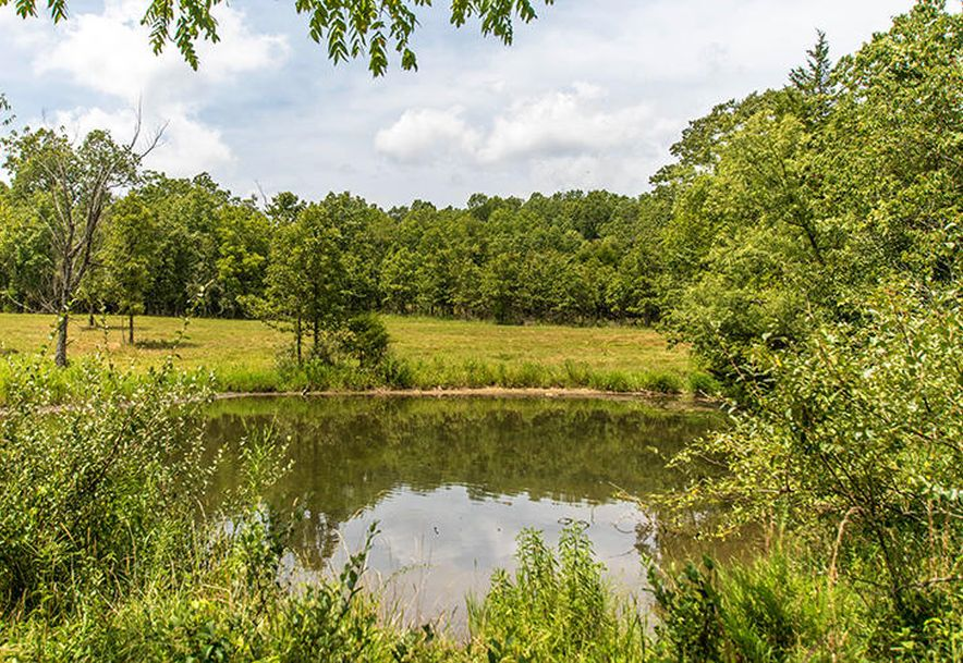 3591 County Road 6420 West Plains, MO 65775 - Photo 59