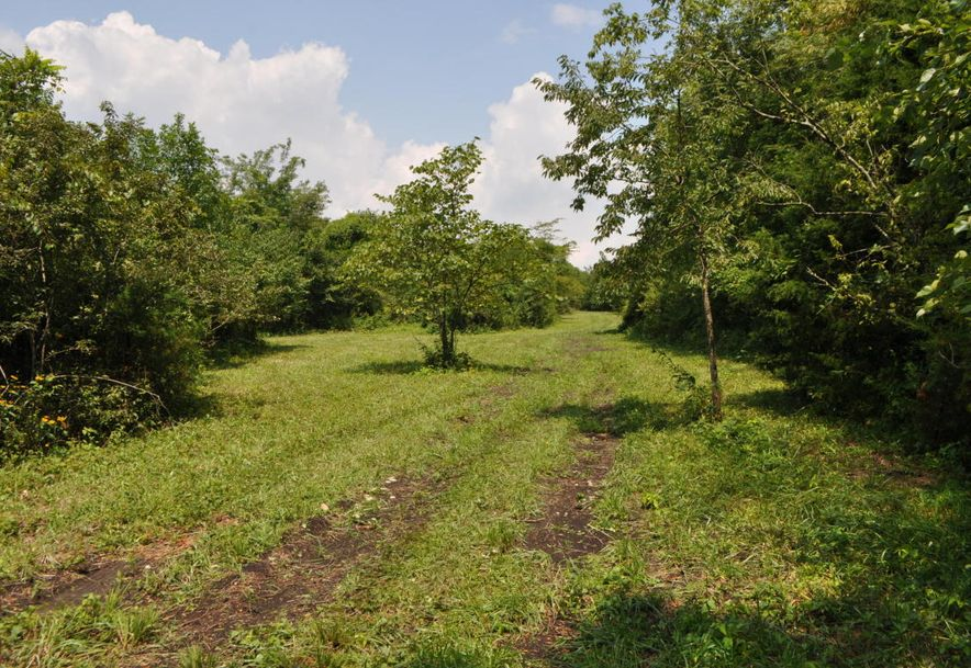 Tbd North State Highway Z Willard, MO 65781 - Photo 10