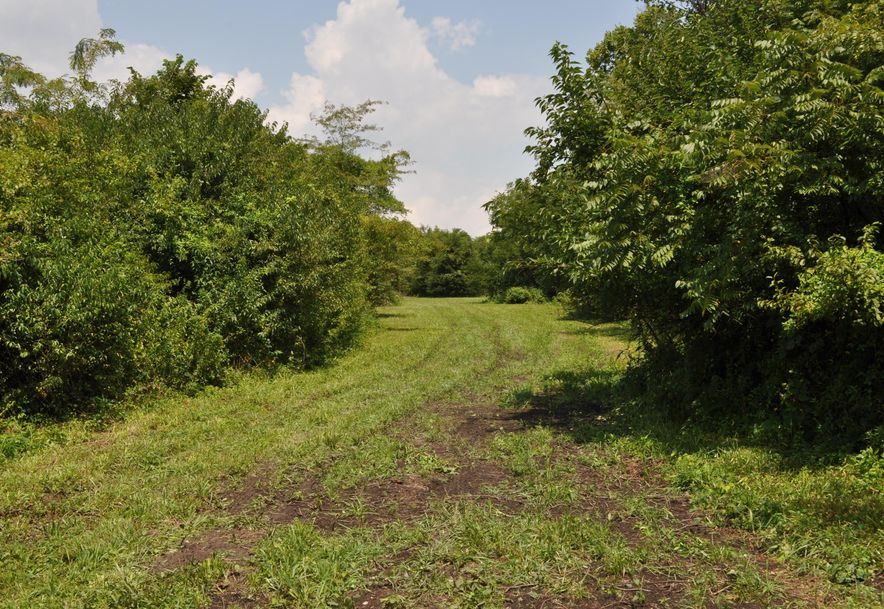 Tbd Hwy Z Tracts 3 & 4 Willard, MO 65781 - Photo 5