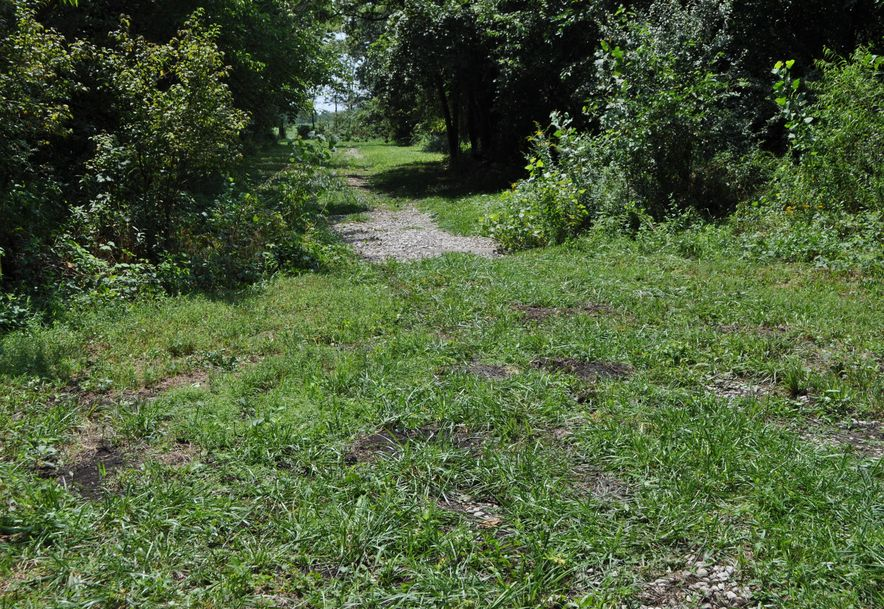 Tbd Hwy Z Tracts 3 & 4 Willard, MO 65781 - Photo 6
