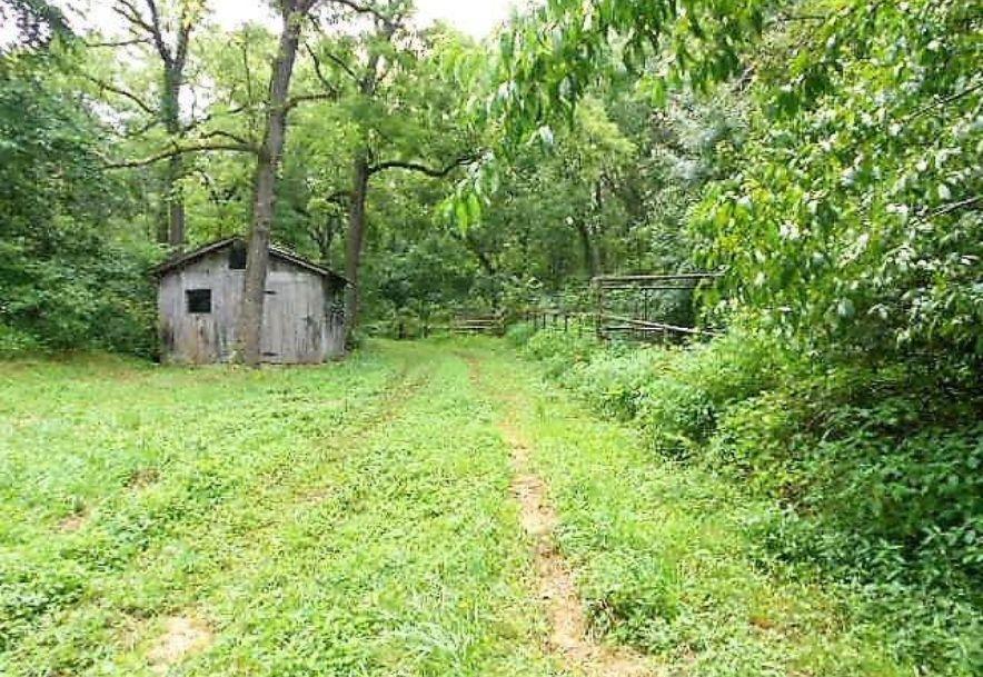 5589 Farm Road 2212 Washburn, MO 65772 - Photo 15