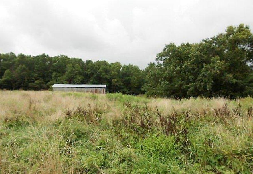 5589 Farm Road 2212 Washburn, MO 65772 - Photo 3