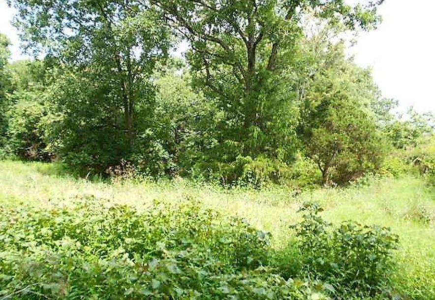 5589 Farm Road 2212 Washburn, MO 65772 - Photo 22