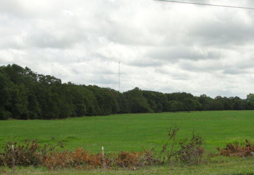 00 137 Highway Raymondville, MO 65555 - Photo 1