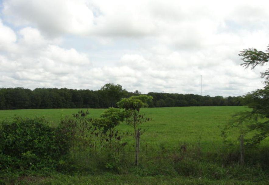 00 137 Highway Raymondville, MO 65555 - Photo 2