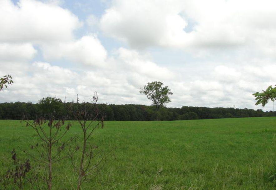 00 137 Highway Raymondville, MO 65555 - Photo 3