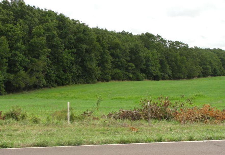 00 137 Highway Raymondville, MO 65555 - Photo 4