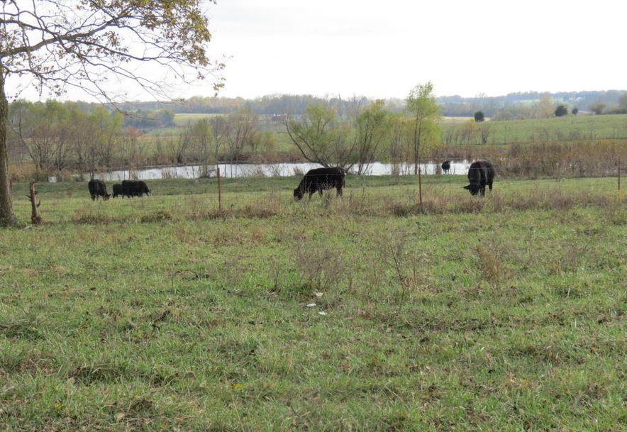 0 B Highway Wheatland, MO 65779 - Photo 2