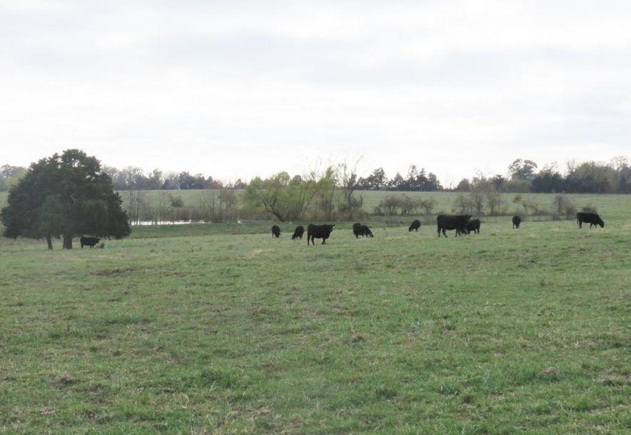 0 B Highway Wheatland, MO 65779 - Photo 5