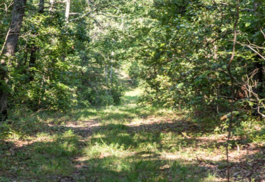317 Rockwood Road Urbana, MO 65767 - Photo 37