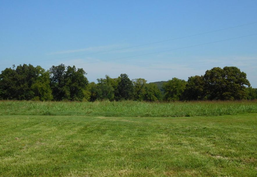 239 Route Cc Greenfield, MO 65661 - Photo 8