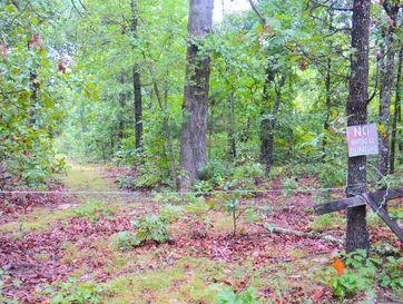 100 Nubin Ridge Road Pocahontas, AR 72455 - Image 1